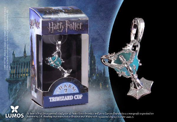 The Triwizard Cup - Charm Lumos - Harry Potter