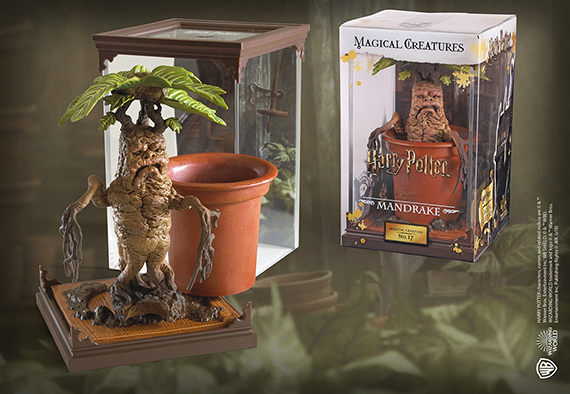 Magical creatures - Mandrake