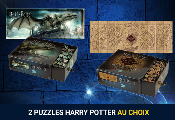 Pack 2 puzzles Harry Potter