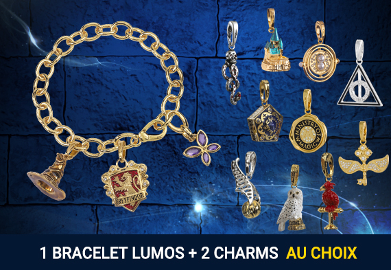 Pack Charm bracelet + 2 charms