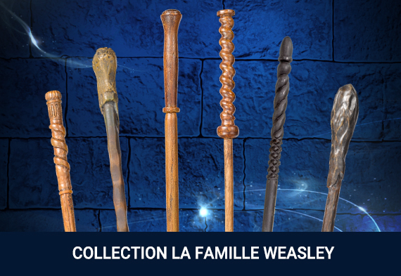 Collection Weasley Family